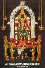 Gnanaprasunnambika Devi Sannadhi-SriKalahasti Temple
