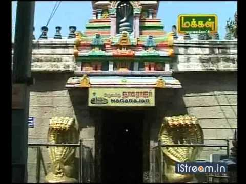 Puja For Sarpa Dosham at Nagercoil Nagaraja Temple | Puja in