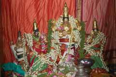 Puja For Shukra Dosha
