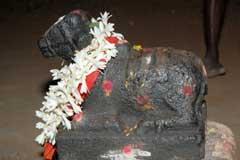 Puja For Kriyashakthi/Creativity